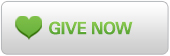 Give Now Button - Grey with Green